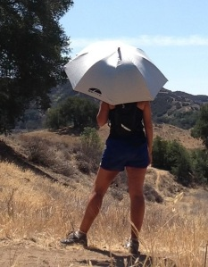 thesilverumbrella