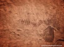 Simple geometric shapes in petroglyph at Honanki - Arizona